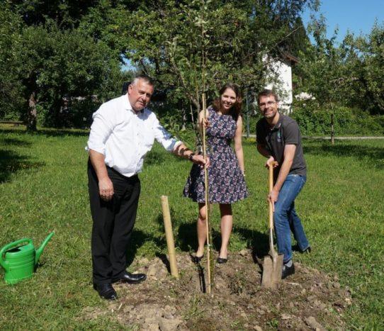 Walter Heidl ist neuester Grundgesetz-Baumpate