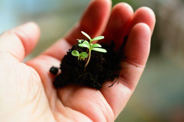 """Letzter Termin – """"Mitmach-Agrarpolitik"""" – Kommt zur Ideenwerkstatt des StMELF"""